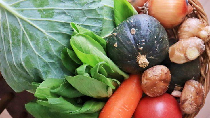 野菜の盛り合わせの写真